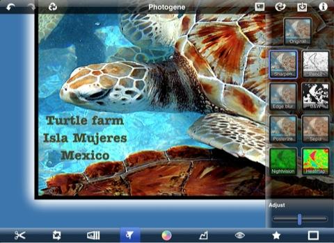 Photogene: edita e envia as imagens para o Flickr e servidores FTP